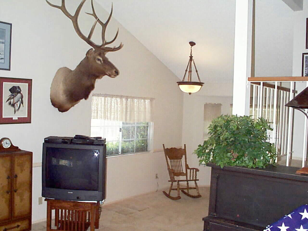 Dramatic High Vaulted Ceilings ... Bring your own Elk!