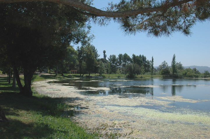 The Community Owned Private Lake & Picnic Grounds